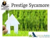 Prestige Sycamore