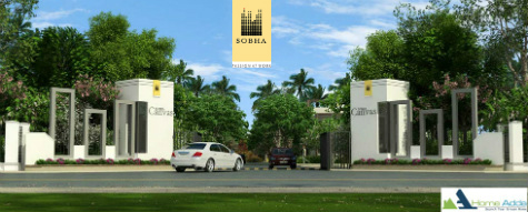 Sobha Canvas